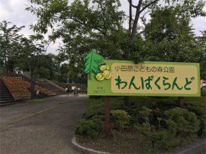 小田原こどもの森公園わんぱくらんどの入り口です
