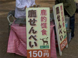 奈良公園のシカに餌をあげます。鹿せんべいを購入